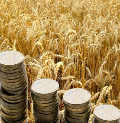 доля дохода сельхозпроизводителя в производстве хлеба для