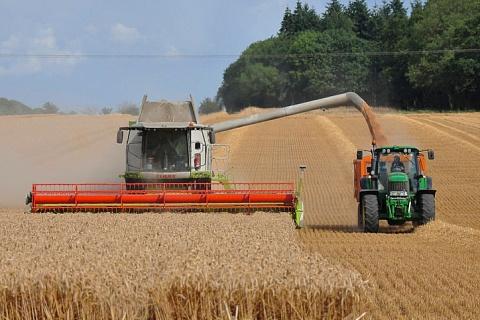 ИКСИ: 2/3 регионов увеличили производство сельхозпродукции