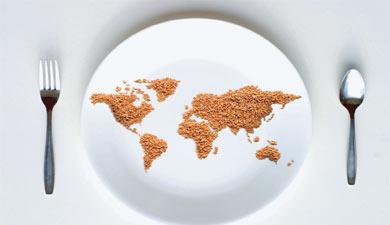 Продовольственный вызов миру