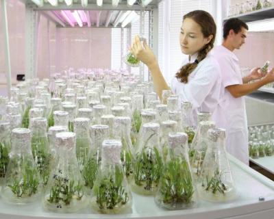 Технологические платформы вАПК: ихроль вразвитии науки ибизнеса