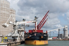 Алексей Гордеев спрогнозировал экспорт зерна в 30 млн тонн