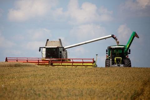 Сбор зерна достиг 100 млн тонн