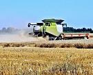 Ростовские аграрии впервые собрали зерна больше кубанских