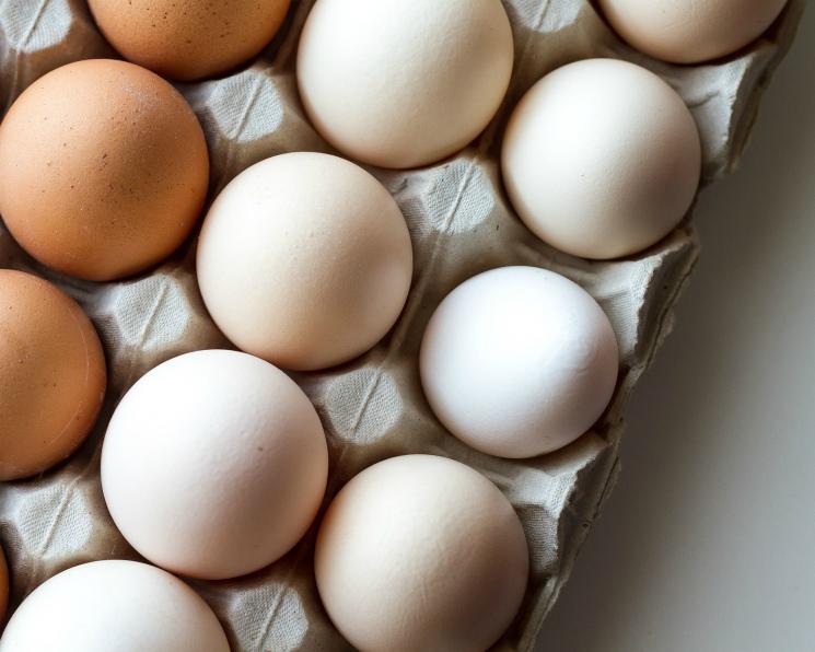 Производители яиц потеряли 19 млрд рублей прибыли из-за низких цен
