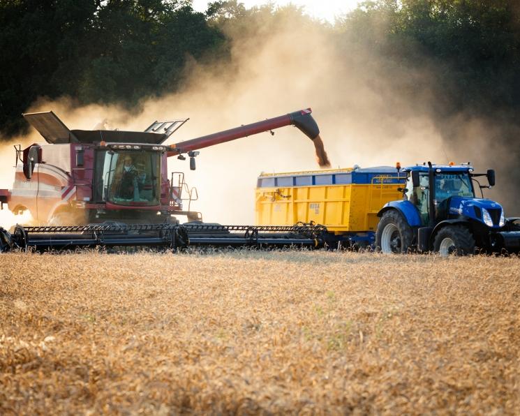 Нефть или почва? Тонна пшеницы стала дороже тонны нефти