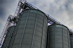 Запасы зерна в Поволжье и Сибири остаются высокими