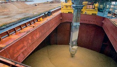 Экспорт зерна— 21,7 млн т