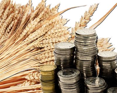 Правительство РФ обсудит распределение субсидий аграриям на 2015 год
