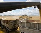 МСХ: урожай зерна составит 72?73 млн т