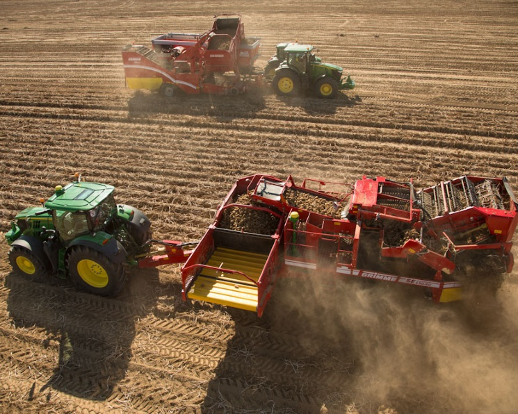 Картофельный недобор. Урожай агрокультуры может сократиться на3 млн т