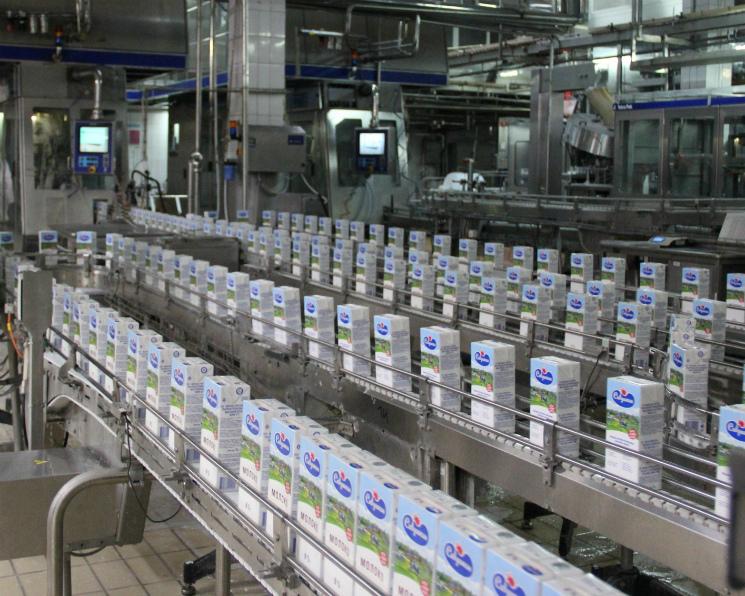 Россельхознадзор может запретить импорт молочной продукции изБелоруссии