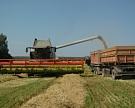 Падение агропроизводства может составить 4%