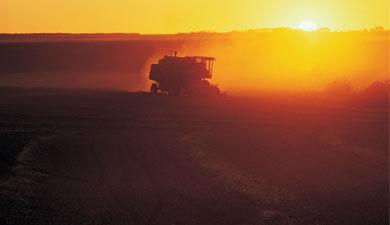 Рынок агротехники может снизиться до80млрдруб.