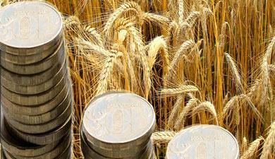 Комитет Госдумы поддержал законопроект ольготах поналогу наприбыль для АПК