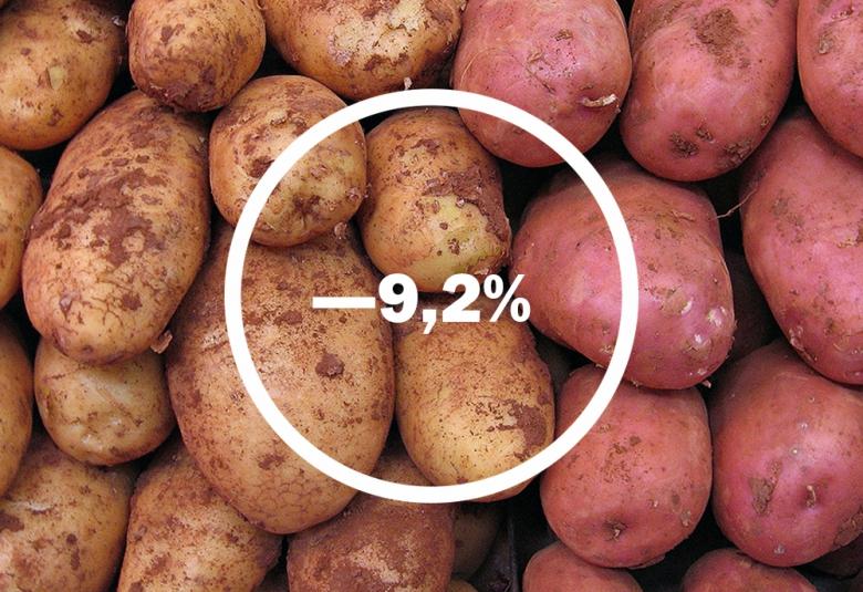 Импорт овощей упал несущественно