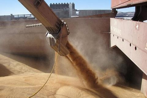 В сезоне-2019/20 Турция может стать крупнейшим покупателем российского зерна