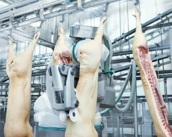 Переработка будущего. Роботизация в мясопереработке приведет к потере конкурентоспособности отрасли?