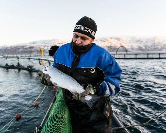 Доля аквакультуры остается низкой