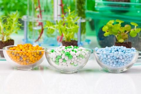 «Зелёная» повестка. Рустам Рамазанов, генеральный директор ГК Bionovatic о грядущем переделе рынка средств защиты растений