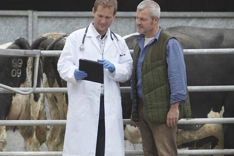 Bayer продаст компании Elanco ветеринарный бизнес