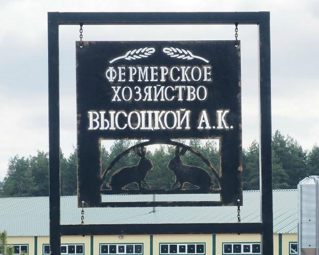 Сын Владимира Высоцкого инвестирует вкролиководство