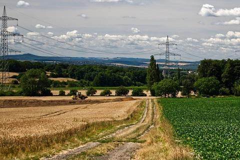 Крупные агрохолдинги планируют расширять земельные банки