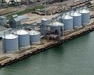 Минсельхоз может экспортировать 500 тысяч тонн интервенционного зерна