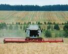 Растениеводство теряет доходность