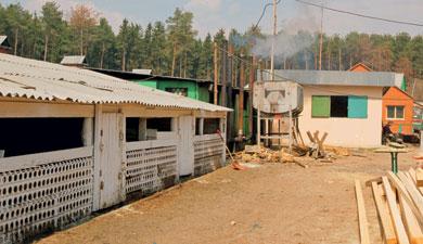 Кировские хозяйства построят фермы