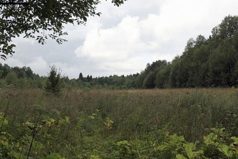 Минсельхоз хочет упростить изъятие неиспользуемых земель
