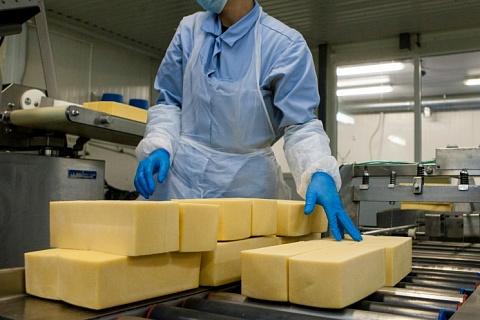 Россия сохранит место в топ-3 мировых производителей сыра
