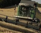 Урожай зерновых составит 95,5 млн т