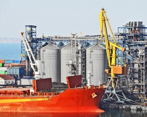 Россия потеряет статус лидера по экспорту пшеницы