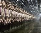 Импорт мяса по итогам 2016 года может сократиться до 820 тысяч тонн