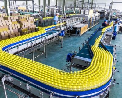 В самом соку: 80% российской переработки фруктов приходится на производство соковой продукции