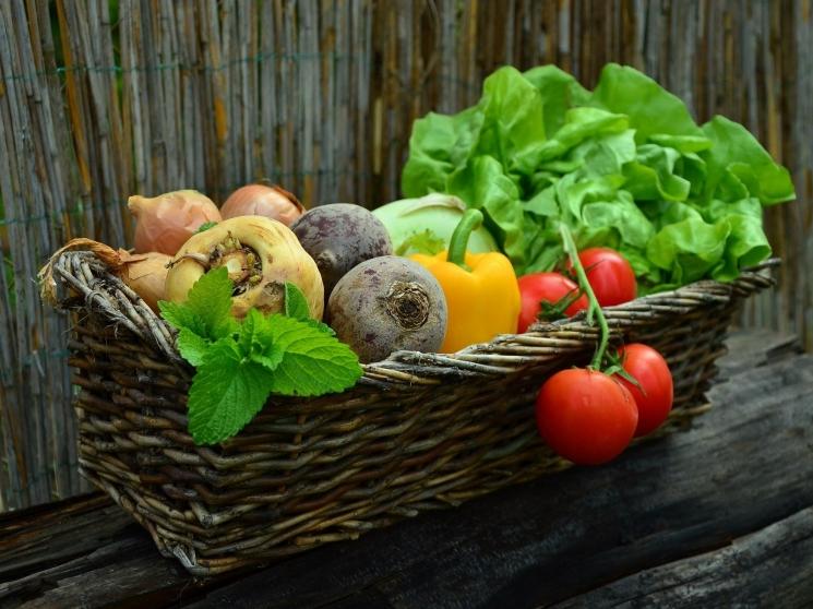 Производство органических овощей купить студию в паттайе