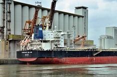 Виюле экспорт зерна может вновь стать рекордным