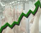 Производство скота и птицы выросло на 7,6%