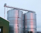 Запасы зерна в России на 1марта составили 22,8 млн т