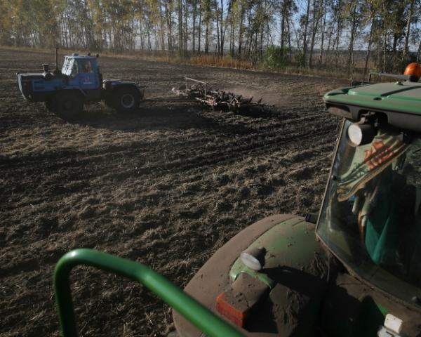 Четвертый год подряд— больше ста? Первые виды наурожай зерна-2017