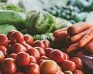 Россия может занять 15% мирового рынка органической продукции