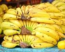 Россия будет закупать только экзотические фрукты ицитрусовые к2020 году