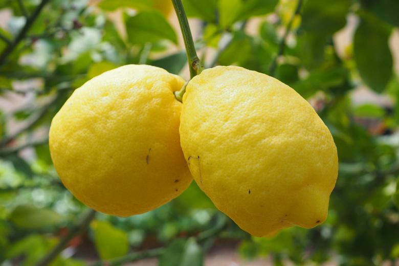 2. Лимоны