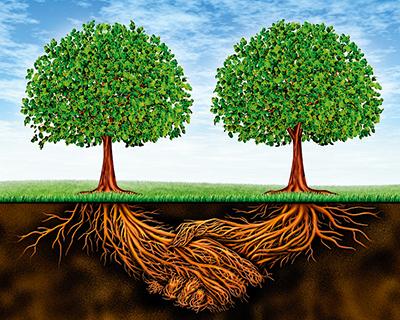 Всельском хозяйстве продолжается консолидация засчет слияний ипоглощений
