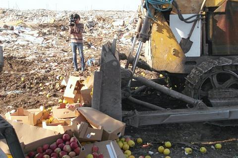 Роспотребнадзор предложил запретить уничтожать продукты