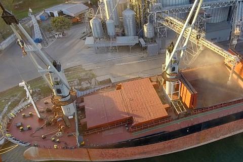 РЗС: Россия может уступить мировое лидерство в экспорте пшеницы