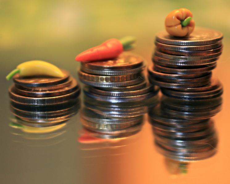 Доля инвестиций сгосподдержкой достигла 46%