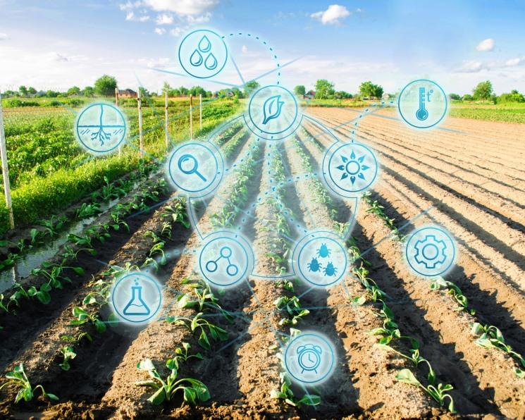 Syngenta добавила «цифру». Производитель СЗР и семян купил digital-платформу