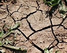 Ветер перемен: изменение климата вРоссии