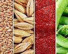Продовольственный индекс цен ФАО показал самый низкий уровень за 4 года